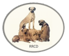 logo rrcd